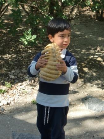 Infantil 4 años en Arqueopinto 2ª parte 39
