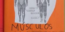 [Lapbook] - Mi atlas del cuerpo humano (3º de primaria) - IMAGEN 5