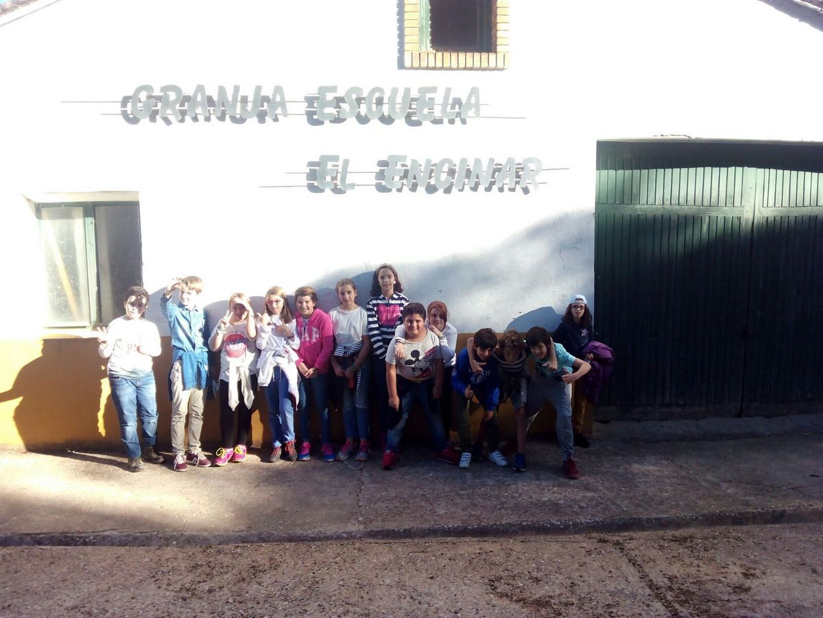 Mohernando 2017_3 7