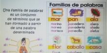 FAMILIAS DE PALABRAS