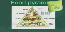 Primaria_2º_Food groups