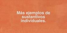 Primaria_2º_Lengua_Sustantivos individuales y colectivos