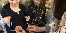 2020_02_27_3º visita Insectpark (4)_CEIP FDLR_Las Rozas 16