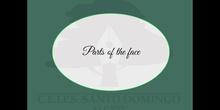 PRIMARIA 1º - PARTS OF THE FACE - NS - MARGA - FORMACIÓN