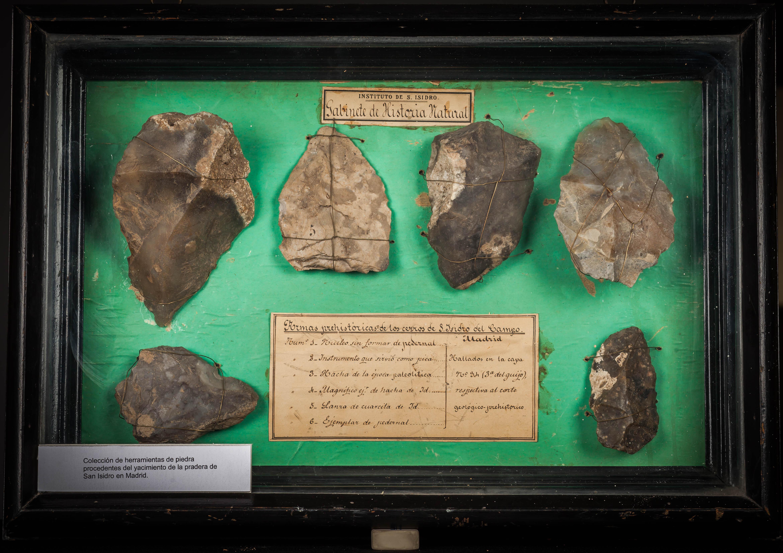 IES_SANISIDRO_MUSEO_Prehistoria_001