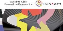 Asistente CSS: Personalización a medida