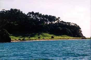 Playa de una isla en Bahía de Islas, Nueva Zelanda