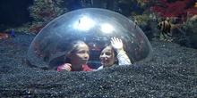 Aquarium Xanadú II 3ºB  15