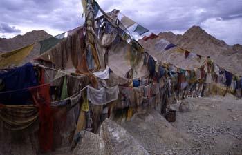 Banderas de oración lanzando plegarias al aire, Ladakh, India
