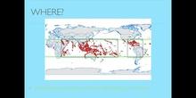 PRIMARIA - 5º - CORAL REEFS - NATURAL SCIENCE - SAMUEL, ÓSCAR y GUILLERMO