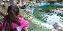 Visita al zoo 2019 9
