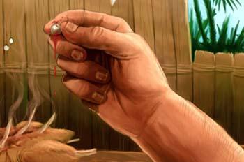 Tío Robinsón: Un perdigón en la carne