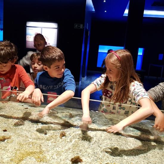 Fotos Aquarium Xanadú 3ºB 8