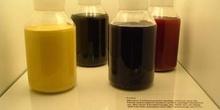 Tintas de offset para cartuchos en línea