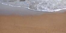Orilla de playa