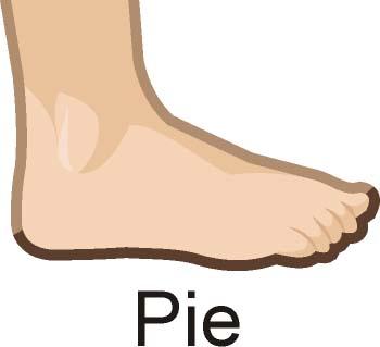 Unidades naturales de medida: Pie