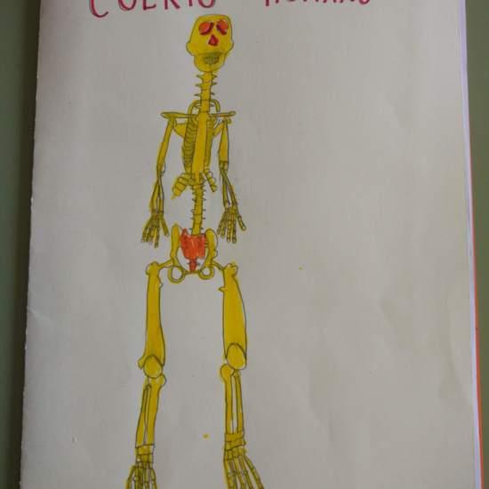 [Lapbook] - Mi atlas del cuerpo humano (3º de primaria) - IMAGEN 1