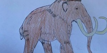 Extinct Animals 1