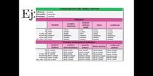 PRIMARIA - 5º - VERBO COMPLETO - LENGUA Y LITERATURA - FORMACIÓN