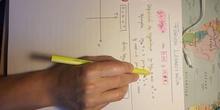 Cómo dibujar una Función Logarítmica