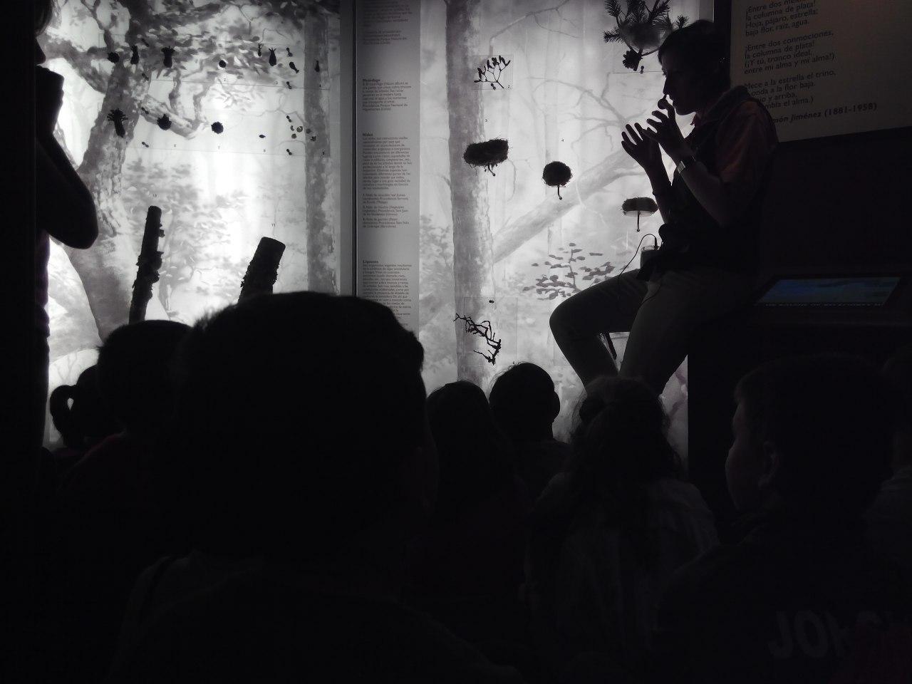 Visita a la exposición El Bosque. 1º 2º Primaria. CEIP Pinocho. 2016/17