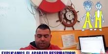EXPLICAMOS EL APARATO RESPIRATORIO