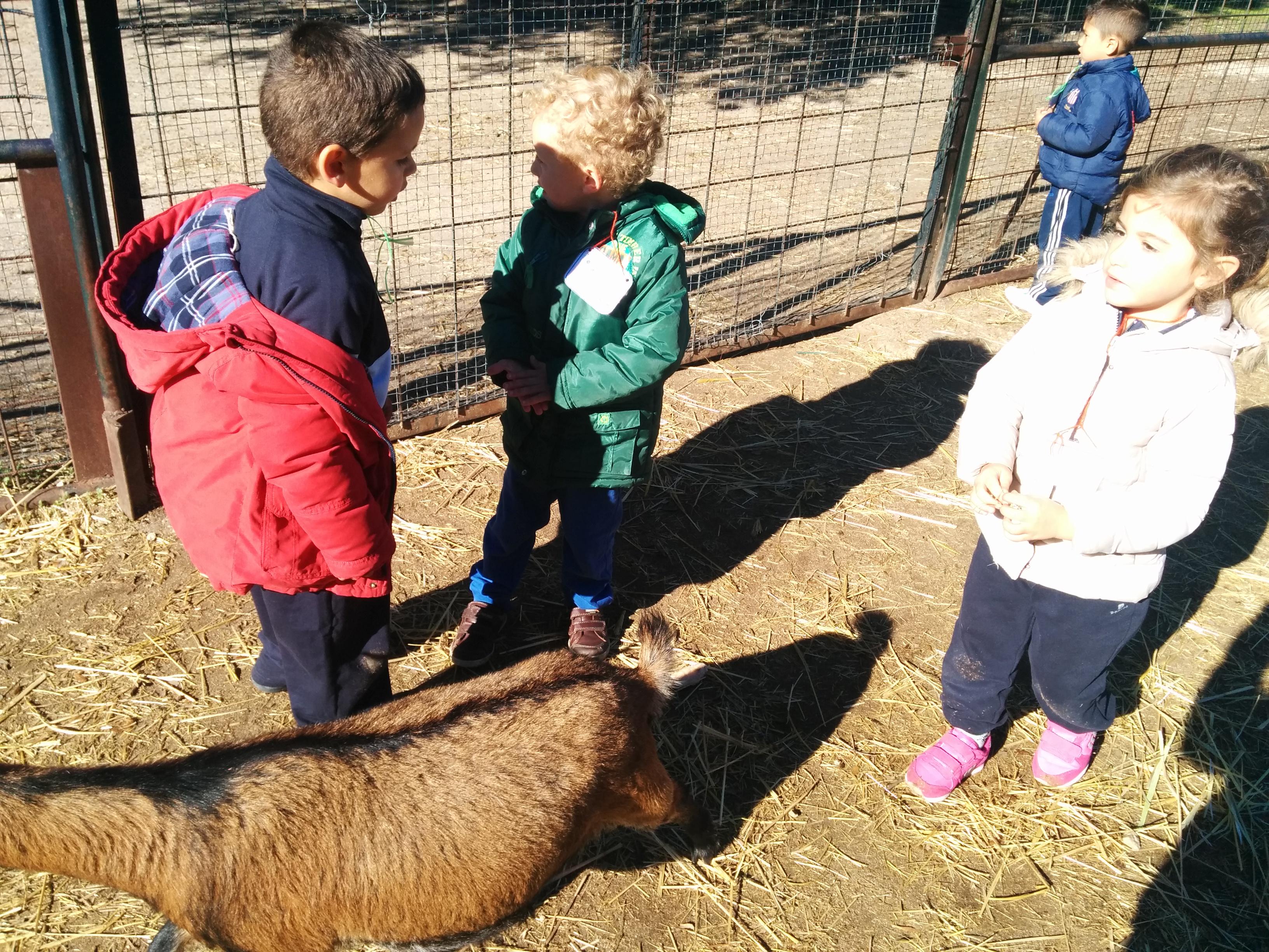 2016_inf 4 años a visita la granja 33
