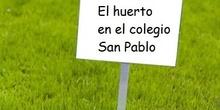 El huerto en el Colegio San Pablo