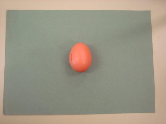 El huevo antes de ser sumergido en vinagre.