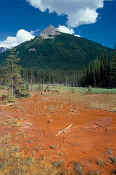 Terreno arcilloso, Montañas Rocosas (Canadá)