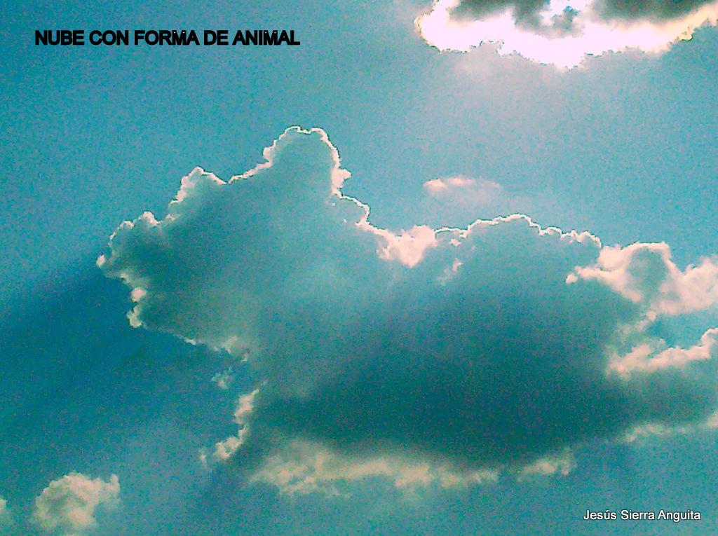 Nube con forma de animal