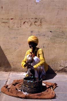 Encantador de serpientes, Jaipur, India