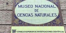 INFANTIL - 5 AÑOS A - MUSEO CIENCIAS NATURALES - ACTIVIDADES
