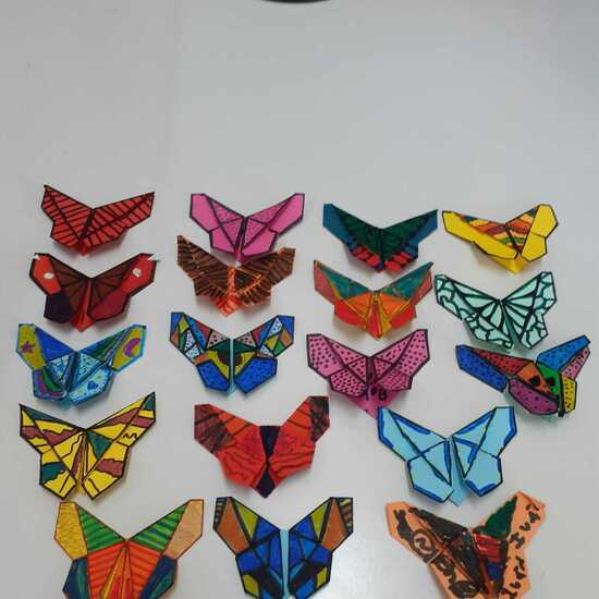 Origami 5º