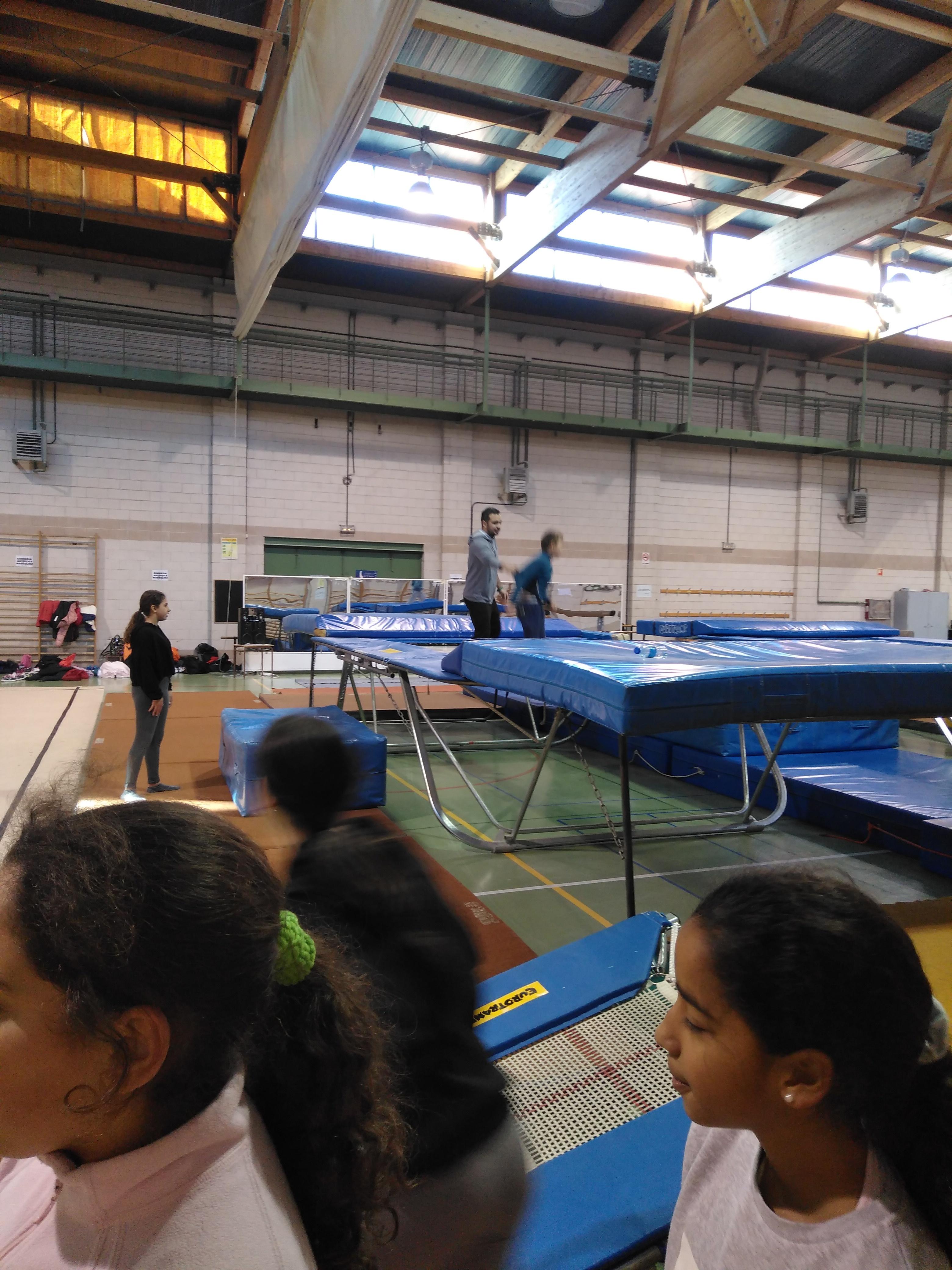 Gimnasia de trampolín 3 13