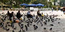 Plaza de Beyacit, Estambul, Turquía