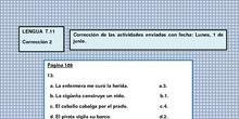 LENGUA T.11 Corrección 2