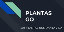 Plantas GO