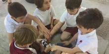 INFANTIL - 5 AÑOS - ROBÓTICA