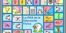 Tablero OCA 1er ciclo grande