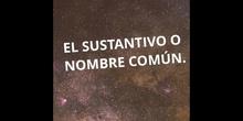 PRIMARIA - SUSTANTIVO COMÚN - P. T. - FORMACIÓN