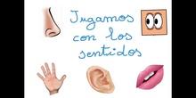 INFANTIL 3AÑOS A - JUGAMOS CON LOS SENTIDOS - FORMACION