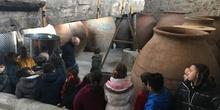 Los alumnos de 5 años visitan el Museo de la Ciudad de Colmenar Viejo