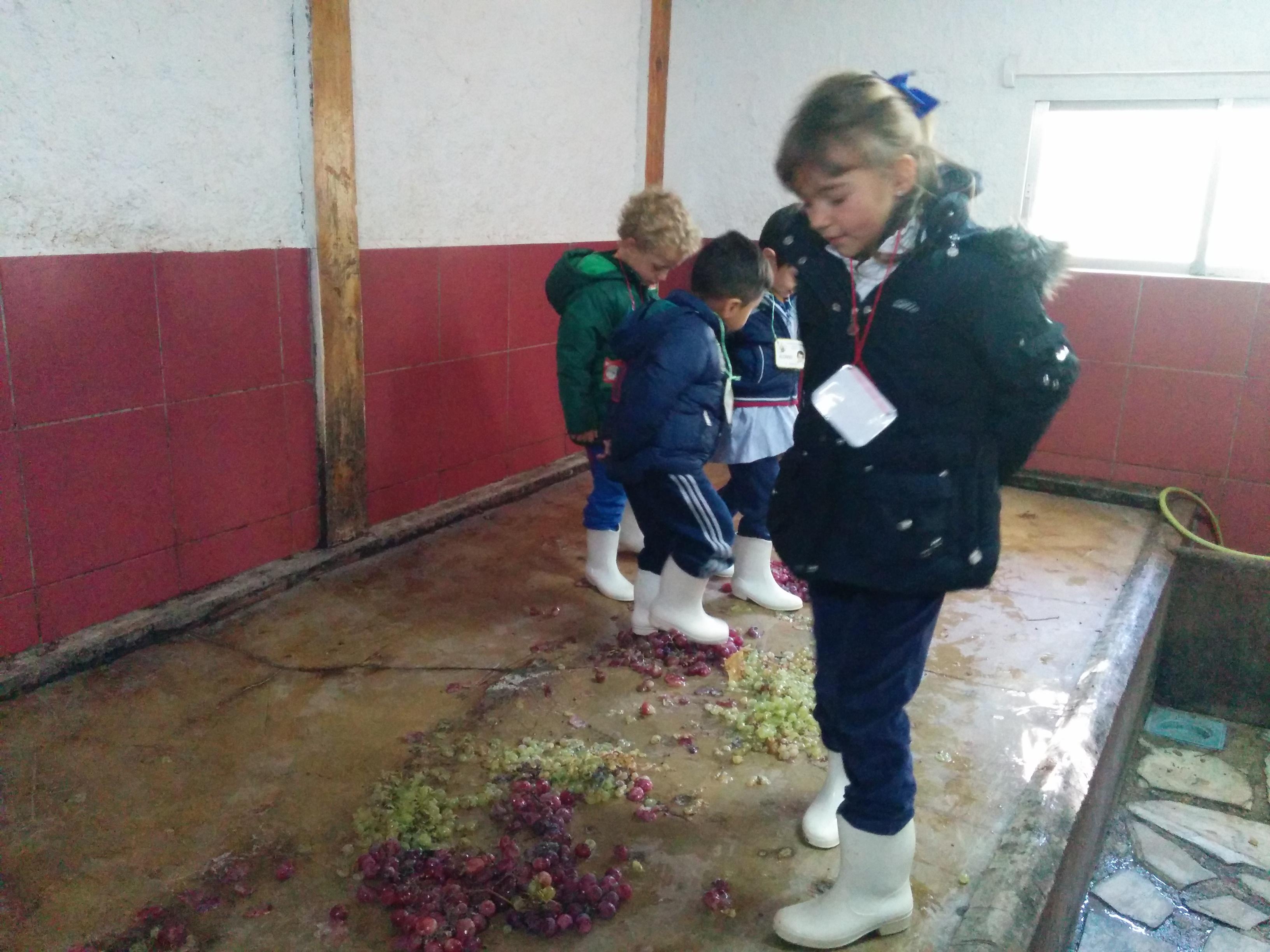 2016_inf 4 años a visita la granja 14