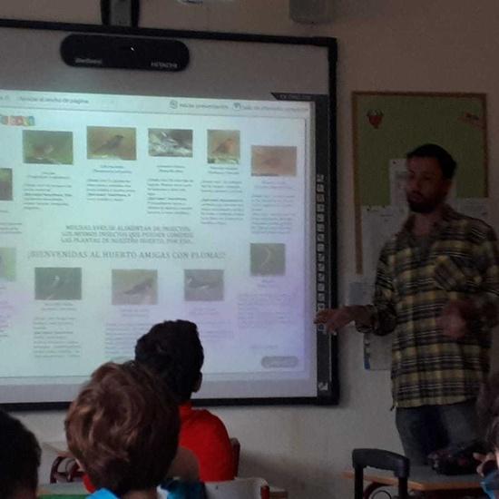 2019_01_27_4º realiza semilleros para pajaros_CEIP FDLR_Las Rozas 4