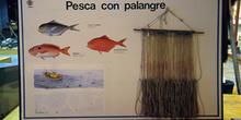 Artes de pesca: palangre, Museo Marítimo de Asturias, Luanco