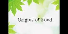 PRIMARIA -  3º - NATURAL SCIENCE - ORIGINS OF FOOD - FORMACIÓN - EMMA L, LUCÍA D, CRIS A Y DANIEL M