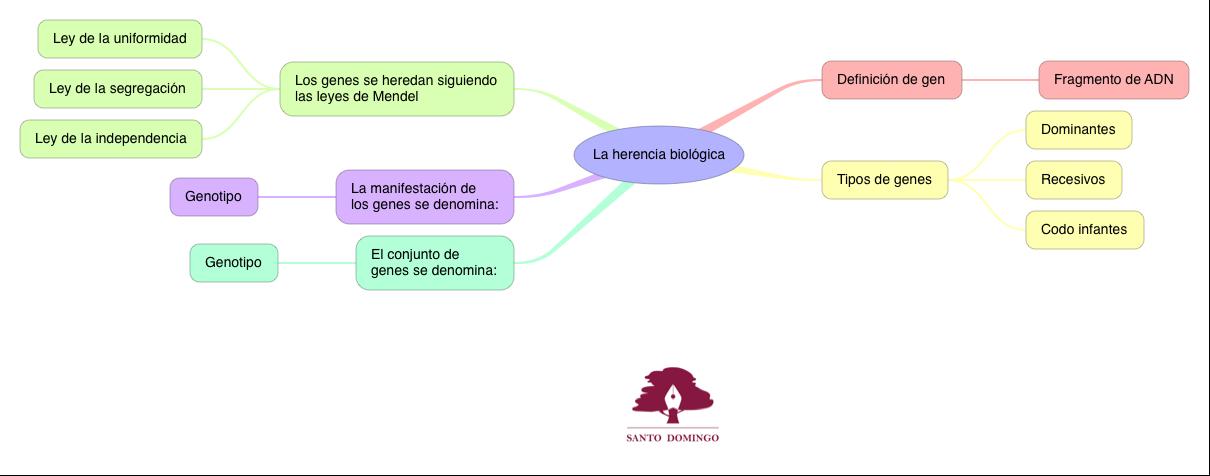 BIO_LA HERENCIA BIOLÓGICA_S4
