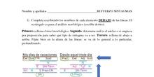 Análisis de sintagmas - Ficha de refuerzo