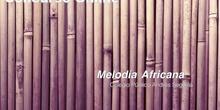 Melodía Africana. Alumnos de 6ºB. CEIP Andrés Segovia